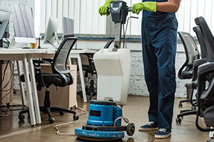 Pest Control Services for Commercial Cleaning Companies