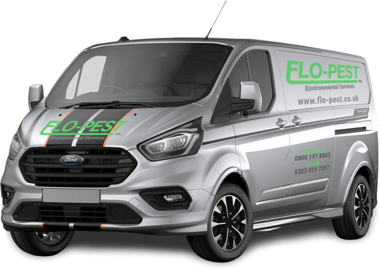 Flo-Pest Envinronmental Services - London Pest Control Experts